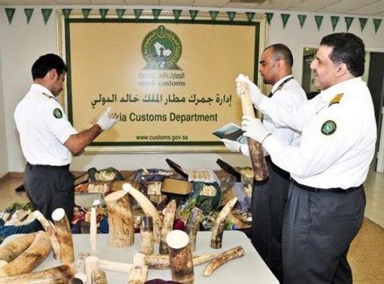 Sedikitnya 229 WNI Ditahan di Saudi Arabia Usai Menunaikan Ibadah Haji